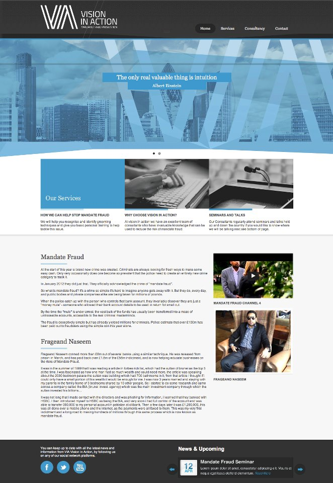 vision in action website